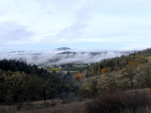 800px-Willamette_Valley_fog