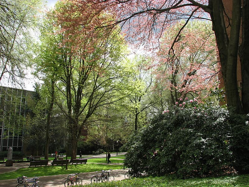 800px-PSU_campus_in_spring_07